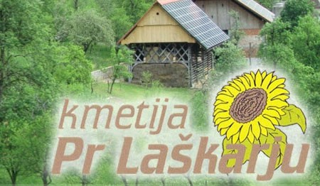 EKOLOŠKA KMETIJA LAŠKAR, BOROVNICA