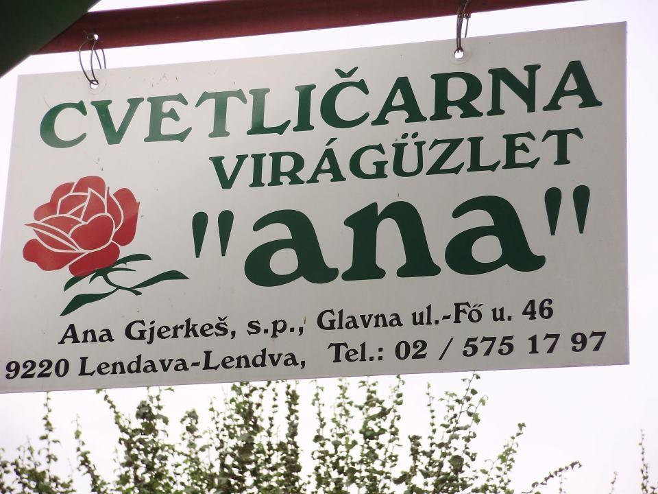 CVETLIČARNA ANA, LENDAVA