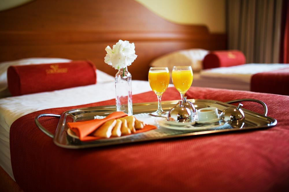 CASINO HOTEL RESTAVRACIJA VENKO, DOBROVO12