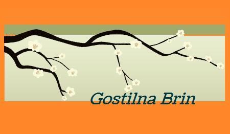 GOSTILNA BRIN, TRBOVLJE 1