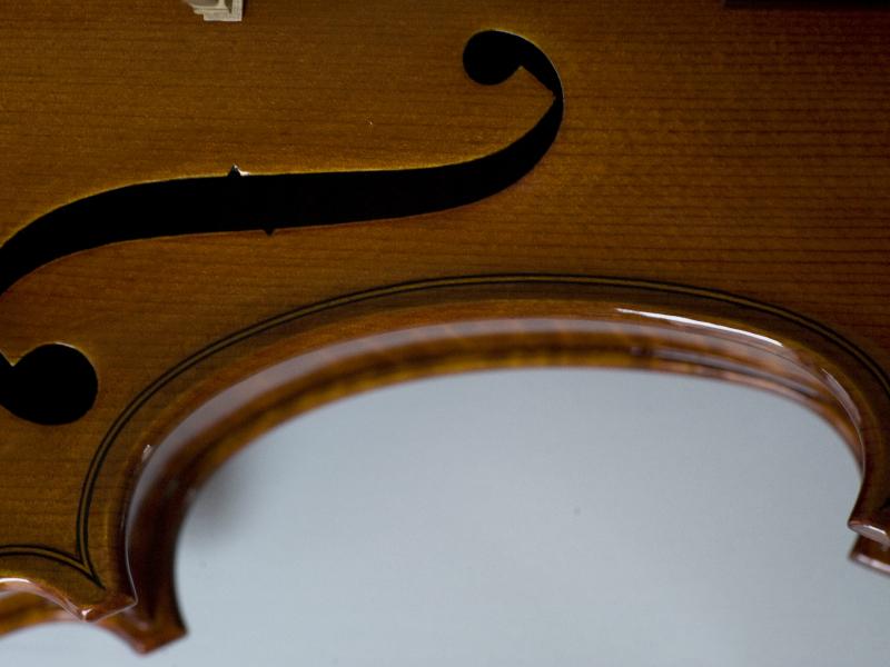 violina7