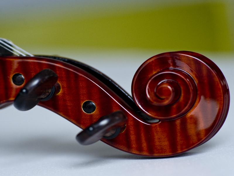 violina8