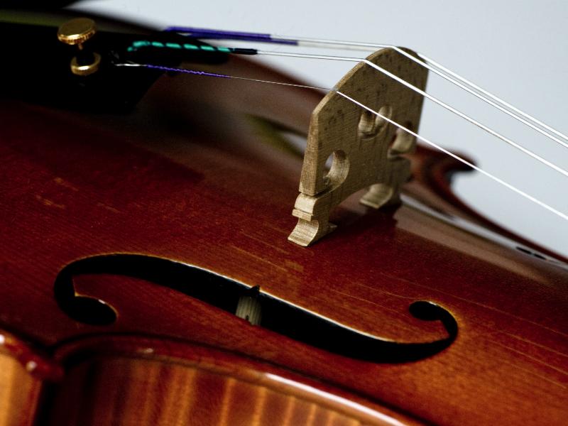 violina9