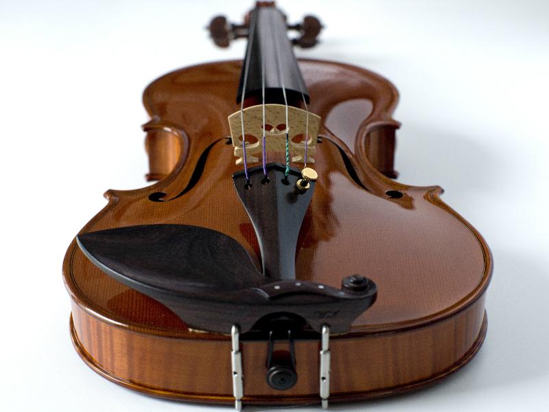 violina6