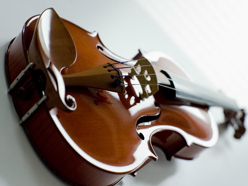 violina5