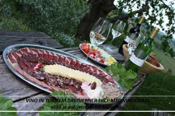 dreisiebner  vino in turizem srce med vinogradi4