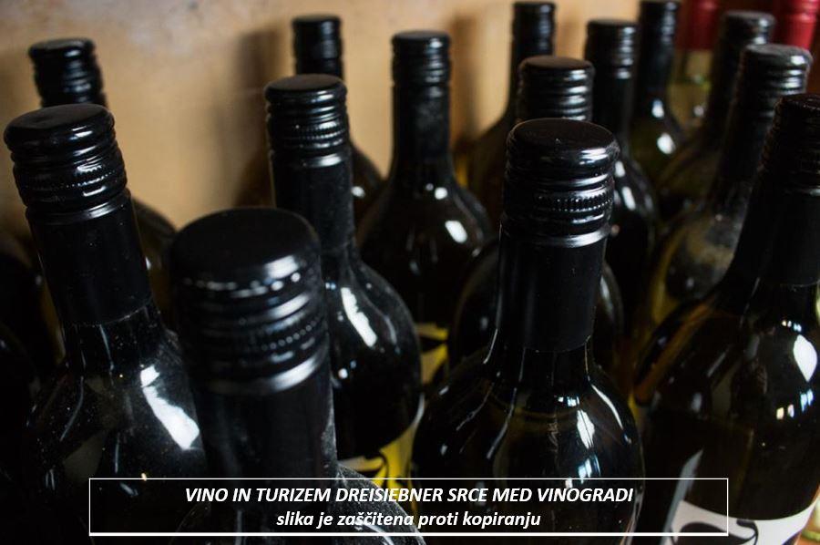 dreisiebner  vino in turizem srce med vinogradi6