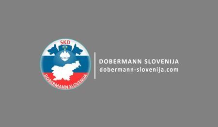KINOLOŠKO DRUŠTVO EURO DOBERMANN CLUB, ŠENTILJ V SLOVENSKIH GORICAH