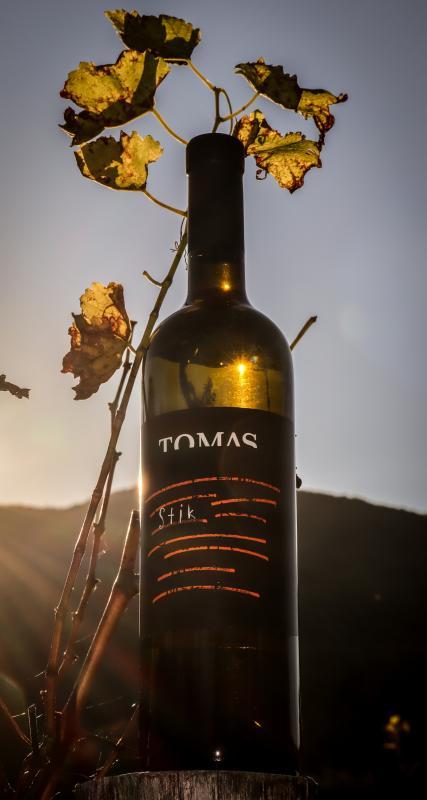 TOMAS, PODNANOS, VIPAVSKA DOLINA 15