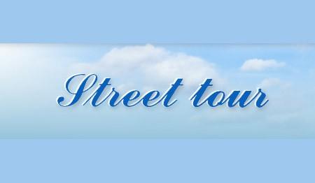 PREVOZ POTNIKOV Z AVTOBUSI, MINI BUSI, KOMBIJI IN OSEBNIMI AVTOMOBILI, STREET TOUR, PORTOROŽ