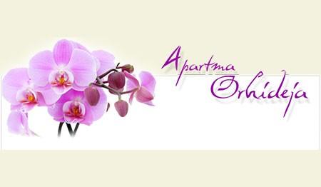 APARTMA ORHIDEJA, TOLMIN