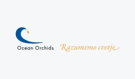 OCEAN ORCHIDS, DOBROVNIK