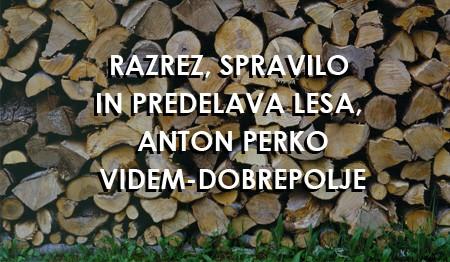 RAZREZ IN SPRAVILO LESA, ANTON PERKO, VIDEM-DOBREPOLJE