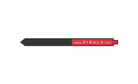 PISALA.NET, TRZIN